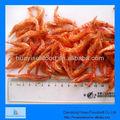 camarón seco de china