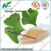 Best Quality ginkgo biloba leaf extract powder defferent specifications