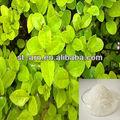 sal de potássio de polímero super absorvente sap em árvore
