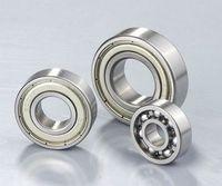 6007zz ball bearing