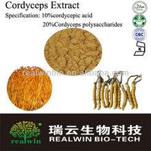 Best Cordyceps extract cordycepic acid/Cordyceps polysaccharides