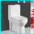 Salle de bains moderne d'une pièce toilettes de réparation