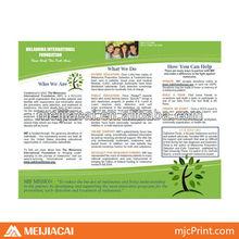 promotional advertising brochure sample