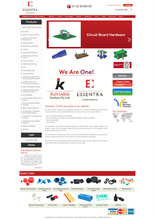 Bug Free, User Friendly Professional Ecommerce Website Design with Payment Integration Services
