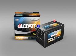Lead Acid Maintenance Free Automotive Battery