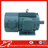YVP Series frenquency changing and speed regulating conveyor belt motor