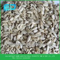 China Sunflower Kernels Palm kernels Shells for Sales