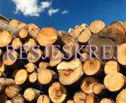 RESJESKREJ Wood Logs Poplar, Oak, Pine, Core, Teak, Diar, Shesham, Kikar, Euclyptus, Cedar, Mango, Hardwood, Rosewood.