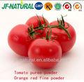 Concentrado de frutas en polvo en polvo de tomate