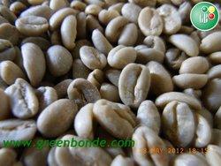 Ethiopian Harar Coffee Beans - Dry (G5)
