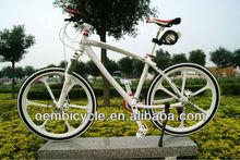 26 inch giant bicycle mountain bike