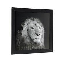 Animal Face Painting/ Modern Animal Painting/ Animal Oil Painting