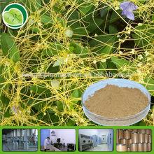 10:1 dodder extract semen cuscutae powder cuscuta seed extract