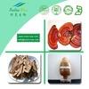 100% Natural Red Reishi Mushroom Extract Powder 10:1 20:1