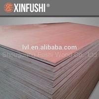Myanmar market full keruing plywood/Marine board