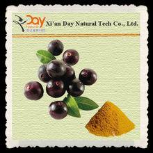 High Quality Acai Berry Benefits/Acai Berry Extract 4:1