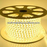 230V SMD5050 50m/roll Flexible LED strip