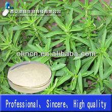 100% Pure and Natural Stevia leaf extract powder Stevia sugar total saponins 40%-90%