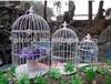 190X350mm elegant bird cages PF-E589