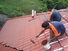 Polymeric Resin Based Roof Coating (Axel Roofgard 800)
