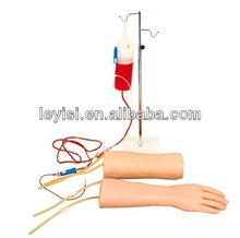 Hands, elbows combined intravenous infusion (blood) Training Model