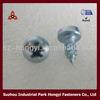 stainless steel carbon steel phil screw