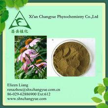 Echinacea Purpurea Herb Extract/4%, 8% Phenolic Compounds