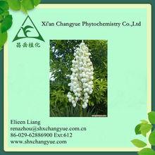 100% Natural Yellowish Powder Saponins 50% UV Yucca plant Extract