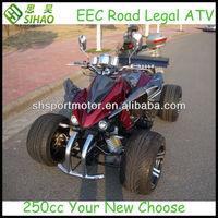 """250cc EEC ATV Street Legal Quad ATV with 14"""" tires"""