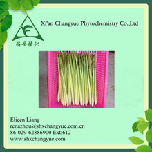 China 100% Pure Citronella Oil Aromatic Essential Oil Steam Distilled Extract