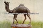 Skinned Rose wood camel