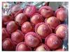 Qinguan apples fruit