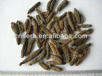 Natural air dried/Silver vine/ Actinidia Fruit/ Mu tian liao