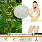 Body slim herbal sliming pills Green Coffee Bean extract Chlorogenic Acid