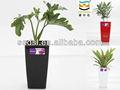 Pequeño plástico maceta, Maceta, Garden planter