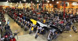 Harley Davidson's for bulk sales & export worldwide!!!
