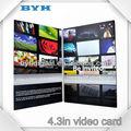 Prezzo basso di alta 2013 qualiy 4,3 pollici scheda video per business e vacanza
