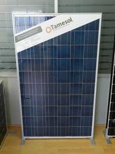 Photovoltaic module TM Series 240W POLY - AntiDumping