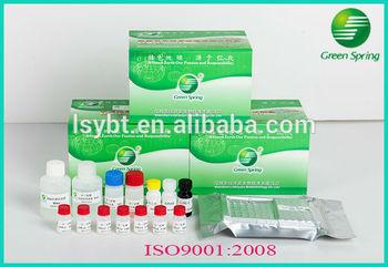 Antibiotic residue detection Chloramphenicol(CAP) ELISA testing
