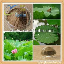 Lotus leaf extract nuciferine powder, nuciferine lotus leaf extract for diet food