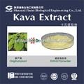 Kavalactones extrait 30% 50% 70% racine de kava pe