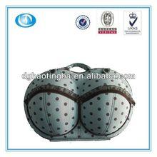 LT-MR4161 protective carrying bra storage bag
