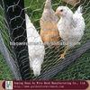 "galvanized hexagonal wire netting/rabbit fencing (1/2""-4"")"