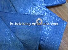 waterproof shrink resistant tarpaulin sheet,blue color 50gsm poly sheeting