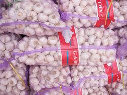 High Quality Natural White Fresh Garlic For Sale