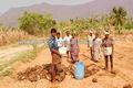 Beneficiosos microorganismos para mejorar equilibrio natural de suelo