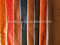 Dyed genuine ostrich leather