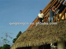 Plastic Thatch Roof