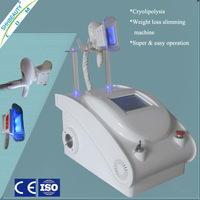 2014 Hot Sale Cryolipolisis Belly Fat Loss Machine with Warranty