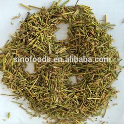MA HUANG herbal medicine ephedra